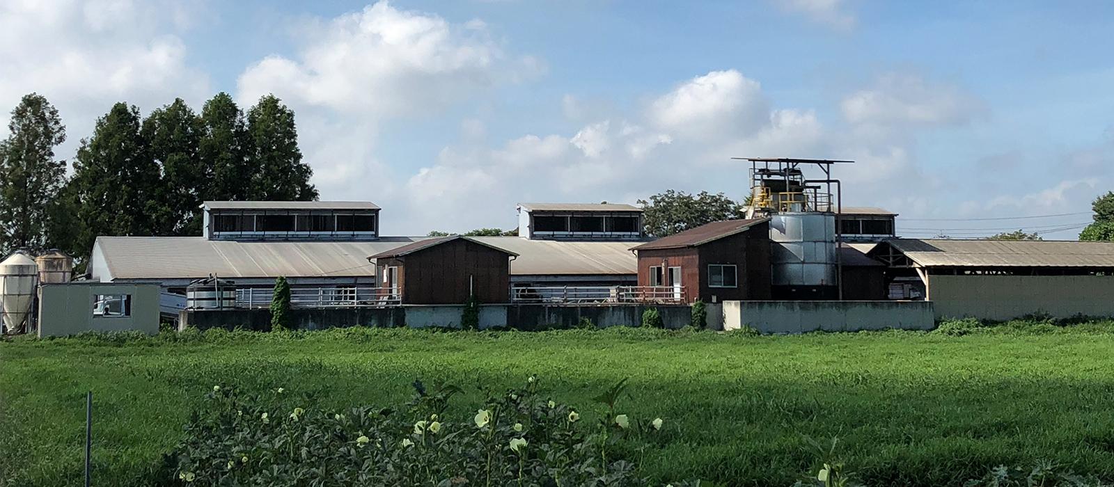 横山ホッグファーム